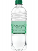 Radnor Sparkling Water - 24 x 500ml bottle