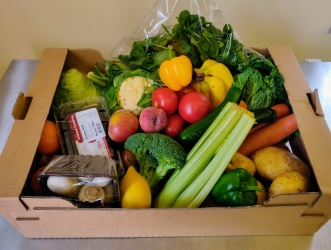 Large Fruit and Vegetable Box - 16 Seasonal Items